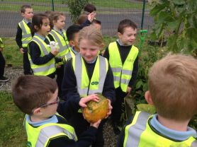 Year 3's trip to the Allotment Garden and the Park.