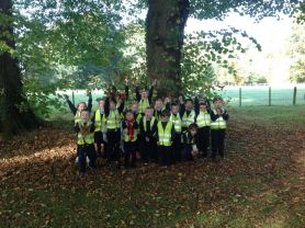 Year 3's Autumn visit to the woods