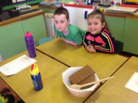 Year 3  Heating and Cooling investigation