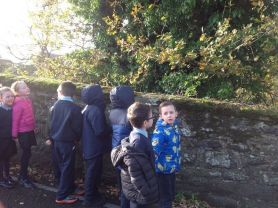 Year 3 visit to the woods