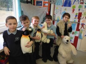 Exploring the Arctic in Year 2