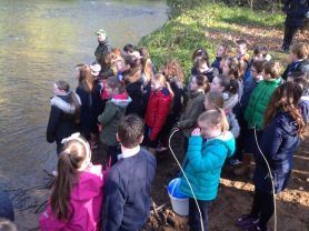 Year 7 Salmon Release with Anahorish P.S