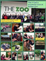 Year 3 and 4 had a wonderful trip to Belfast Zoo on Monday 21st May