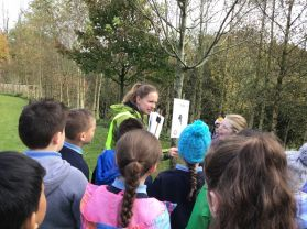 Year 6 begin Forest School Programme